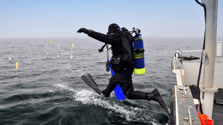 cursos buceo open water diver iniciación